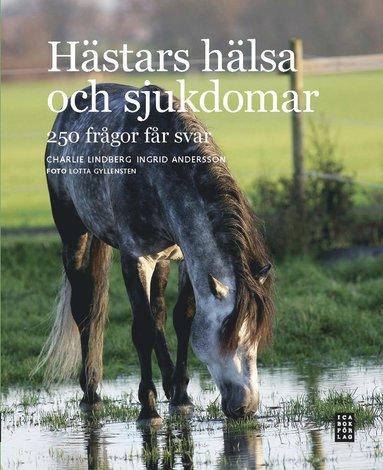 bokomslag Hästars hälsa och sjukdomar : 250 frågor får svar