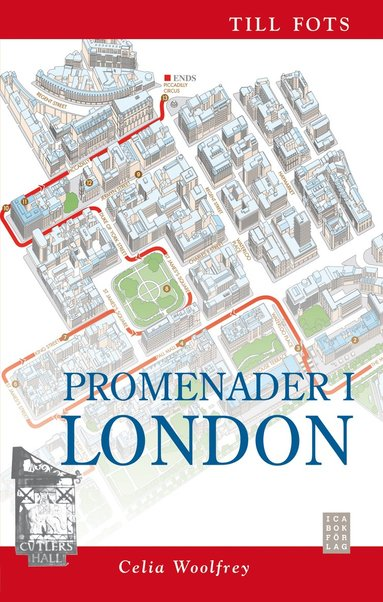 bokomslag Promenader i London