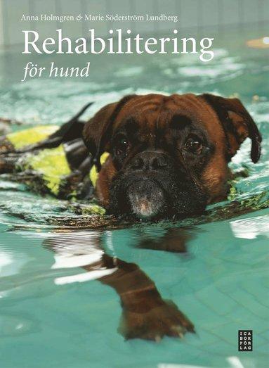 bokomslag Rehabilitering för hund
