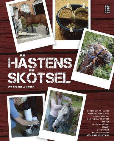 bokomslag Hästens skötsel