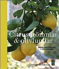 bokomslag Citrusdrömmar & olivlundar : medelhavskänsla i trädgården
