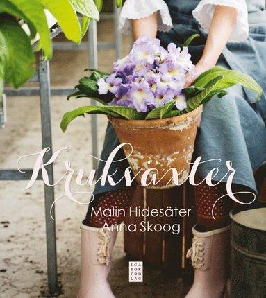 bokomslag Krukväxter