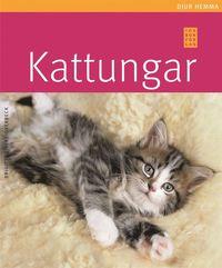 bokomslag Kattungar