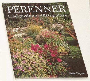 bokomslag Perenner