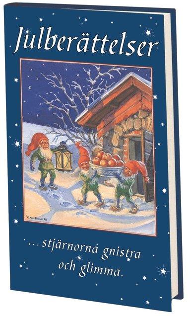 bokomslag Julberättelser