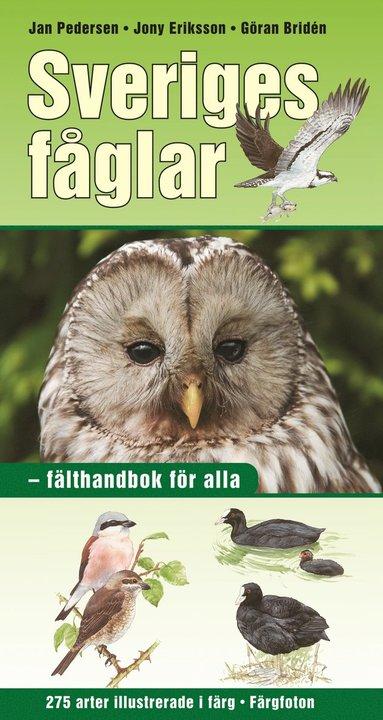 bokomslag Sveriges fåglar : fälthandbok för alla