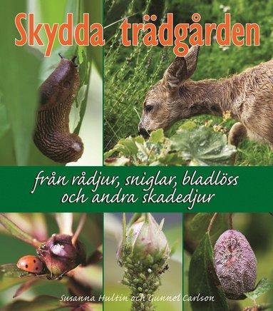 bokomslag Skydda trädgården : från rådjur, sniglar, bladlöss och andra skadedjur