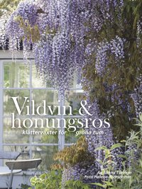 bokomslag Vildvin & honungsros : klätterväxter för gröna rum