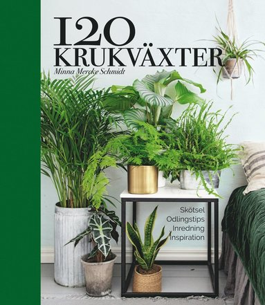 bokomslag 120 krukväxter – skötsel, odlingstips, inredning, inspiration