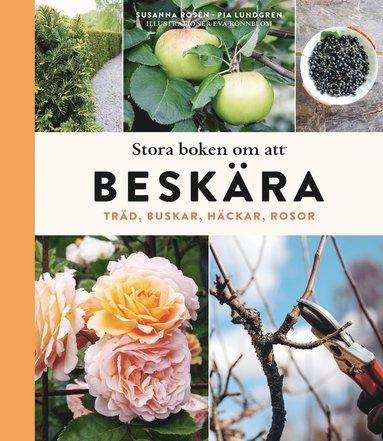 bokomslag Stora boken om att beskära : träd, buskar, häckar och rosor