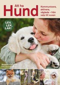 bokomslag Att ha hund : Kommunicera, aktivera, vägleda – från valp till vuxen