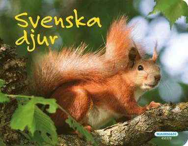 bokomslag Svenska djur