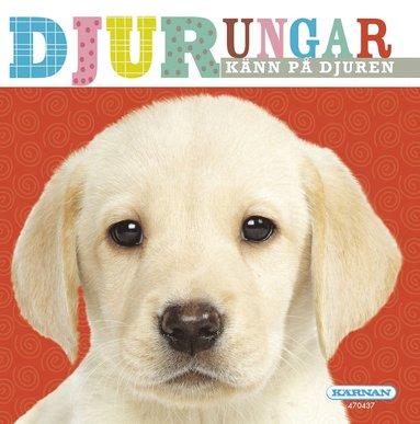 bokomslag Djurungar : känn på djuren