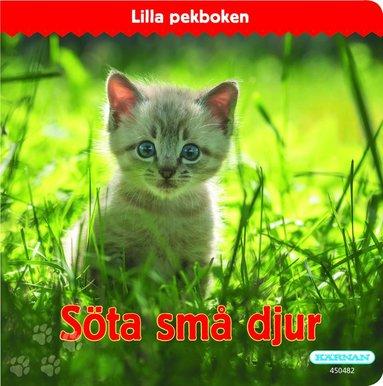 bokomslag Söta små djur