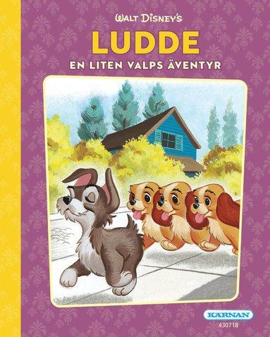 bokomslag Ludde. En liten valps äventyr