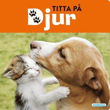 bokomslag Titta på djur