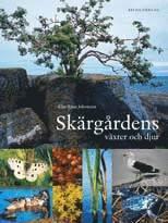 bokomslag Skärgårdens växter och djur