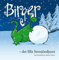 bokomslag Birger - det lilla Storsjöodjuret