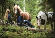 bokomslag Passage : att använda hästar i psykiatrin