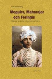 bokomslag Moguler, maharajor och feringis : bilder och berättelser ur Indiens senare historia