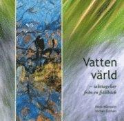 bokomslag Vattenvärld : iakttagelser från en fjällbäck