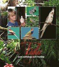 bokomslag Fåglar som sällskap och hobby