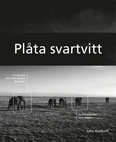 bokomslag Plåta svartvitt