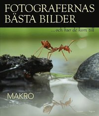 bokomslag Fotografernas bästa bilder och hur de kom till : Makro