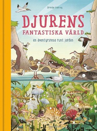 bokomslag Djurens fantastiska värld : en äventyrsresa runt jorden