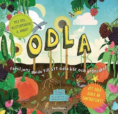 bokomslag Odla : familjens guide till att odla bär och grönsaker