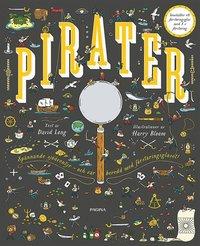 bokomslag Pirater