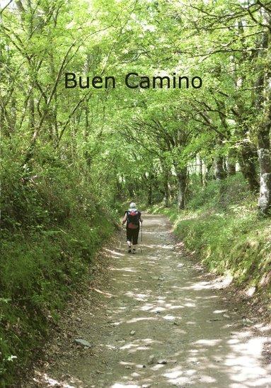 bokomslag Buen Camino