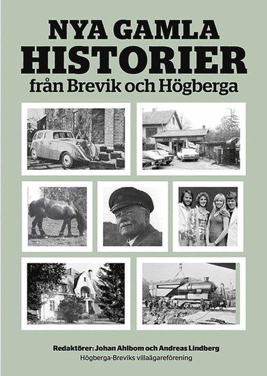 bokomslag Nya gamla historier från Brevik och Högberga