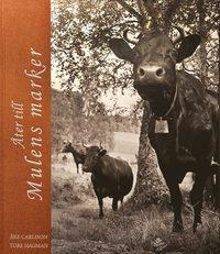 bokomslag Åter till Mulens marker