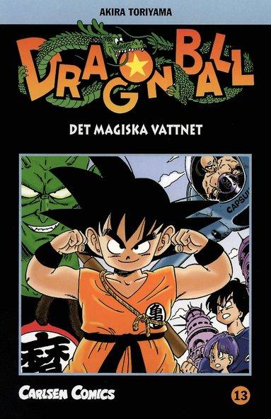 bokomslag Dragon Ball 13 : det magiska vattnet