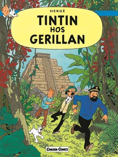bokomslag Tintin hos gerillan