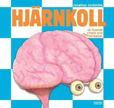 bokomslag Hjärnkoll : så funkar synen och medvetandet
