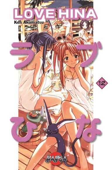 bokomslag Love Hina 12