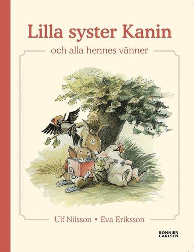 bokomslag Lilla syster Kanin och alla hennes vänner