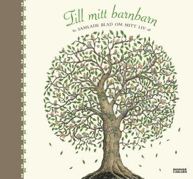 bokomslag Till mitt barnbarn : samlade blad om mitt liv