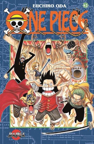 bokomslag One Piece 43