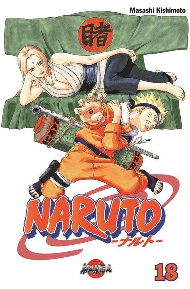 bokomslag Naruto 18