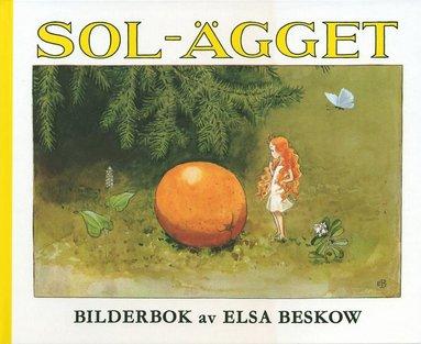 bokomslag Solägget