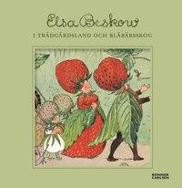 bokomslag I trädgårdsland och blåbärsskog