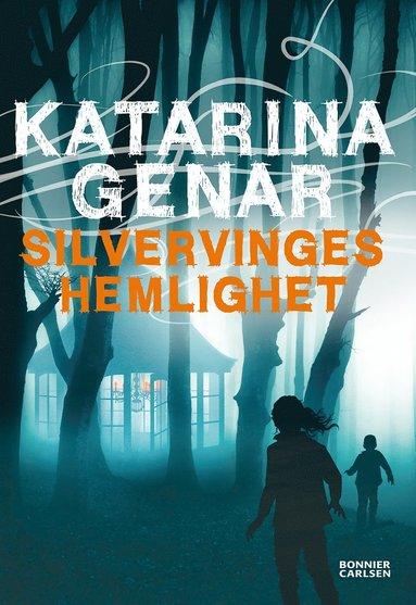 bokomslag Silvervinges hemlighet