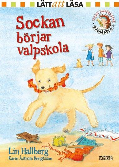 bokomslag Sockan börjar valpskola