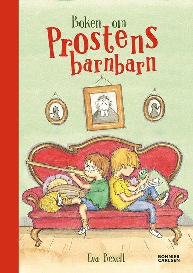 bokomslag Boken om prostens barnbarn