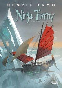 bokomslag Ninja Timmy och staden av is