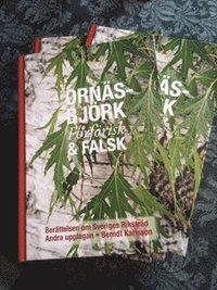 bokomslag Ornäsbjörk : förförisk & falsk