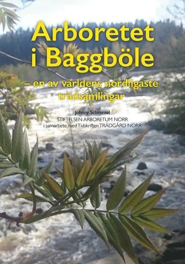 bokomslag Arboretet i Baggböle : en av världens nordligaste trädsamlingar